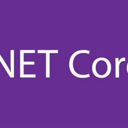 netcore2